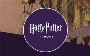 Harry Potter site
