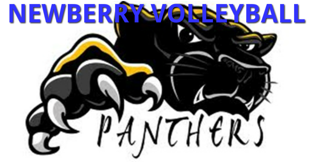Newberry Volleyball Panther